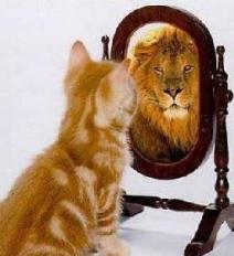 zelfvertrouwen1